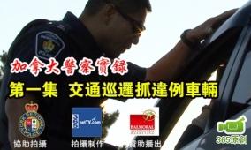 警察实录 1. 交通巡逻抓违例车辆