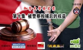 警察实录第10集:被警察拘捕后的权益