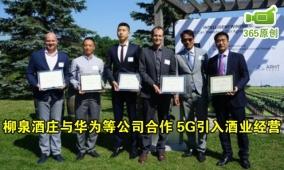 柳泉酒庄与华为合作 5G引入酒业经营